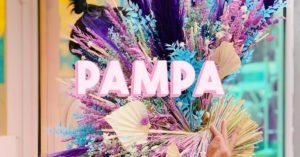 pampabonsplansclac